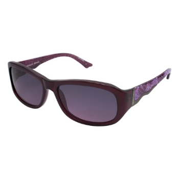 Brendel 906005 Sunglasses