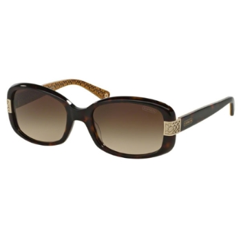 Coach HC8003 Lillian Sunglasses