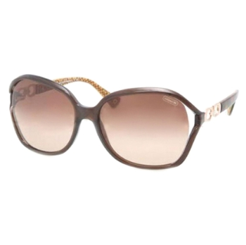 Coach HC8018 Sunglasses
