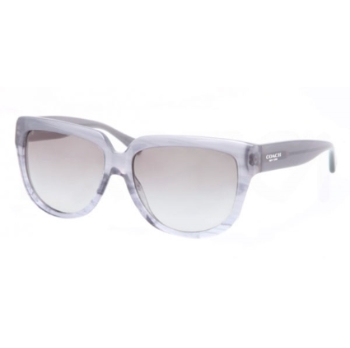 Coach HC8085F Sunglasses
