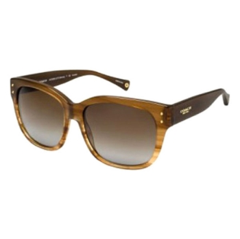 Coach HC8086 Sunglasses