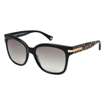 Coach HC8103 Sunglasses