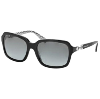Coach HC8104 Sunglasses