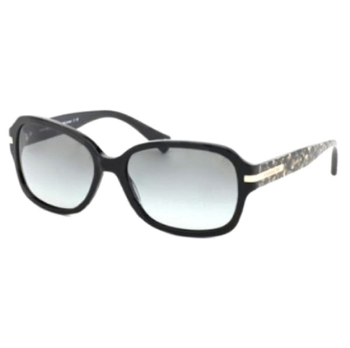 Coach HC8105 Sunglasses