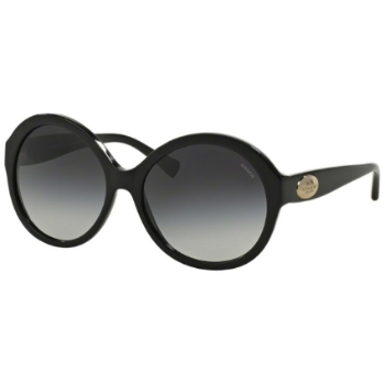 Coach HC8149 Sunglasses