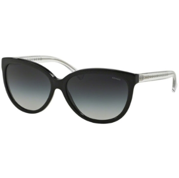 Coach HC8153 Sunglasses