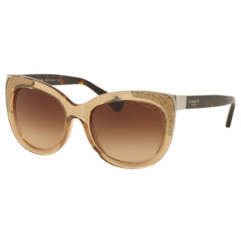 Coach HC8171 Sunglasses