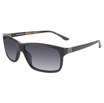 Spine Polarized Sunglasses