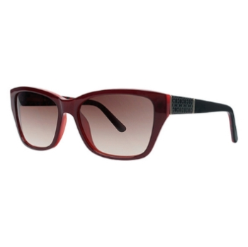 Ann Taylor AT504 Sunglasses
