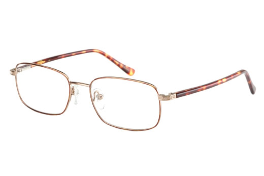 Rembrand Aiden Eyeglasses in Gold/Tortoise