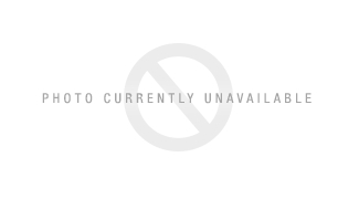 ... Emporio Armani EA4049 Sunglasses in 538613 Striped Brown Brown Gradient  ...